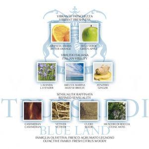 Trussardi Blue Land for men Deodorant Stick 75ml мъжки