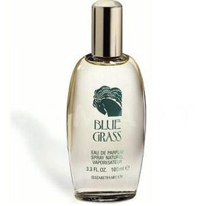 Elizabeth Arden Blue Grass Eau de Parfum 100ml дамски без кутия