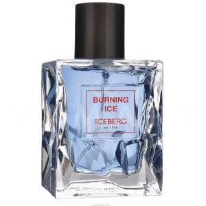 Iceberg Burning Ice Eau de Toilette 100ml мъжки